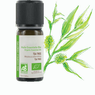 huile-essentielle-tea-tree-biologique-i-765-330-png