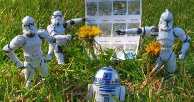 star-wars-weed-control.jpg.662x0_q70_crop-scale