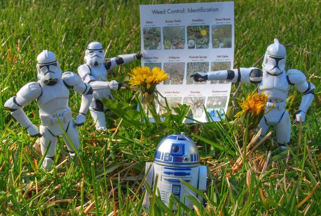 star-wars-weed-control.jpg.662x0_q70_crop-scale