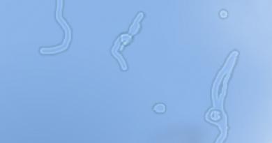 Floaters-FI-759x421