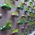 boteille-plastique-pot-fleur-mural1