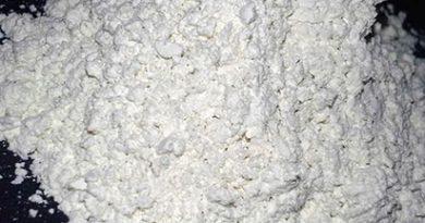 terre-de-diatomee-poudre-00-ban
