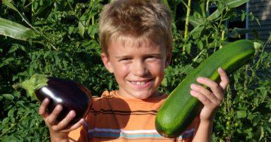 vegetables-gardening-ideas-for-kids