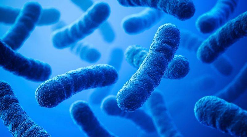 bacterie_5593765