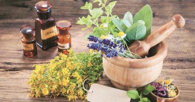 herbs-759