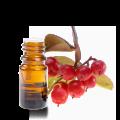 huile-essentielle-gaultherie-odorante