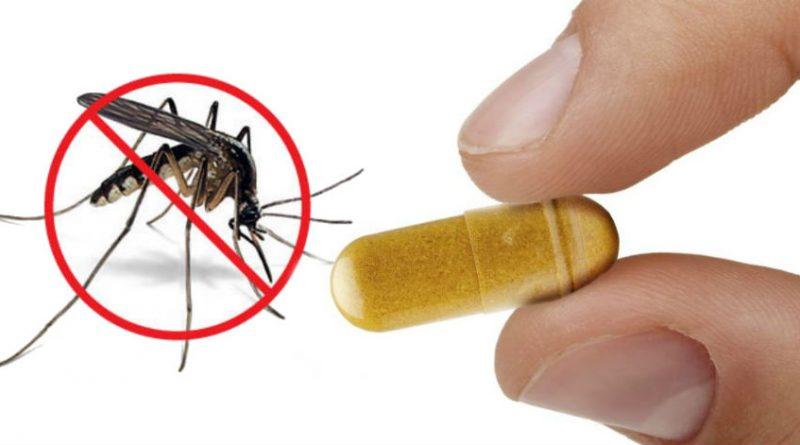 prenez cette vitamine et vous serez sans moustique tout l t. Black Bedroom Furniture Sets. Home Design Ideas
